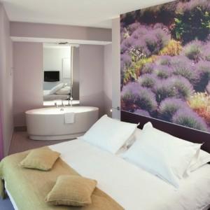 radisson room